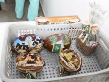 04.09.2015 -APROVEITAMENTO DA CASCA DE CUPUAÇU- BOMBONS FINOS DA AMAZÔNIA (7)