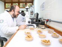 Dr. Leandro Aparecido Pocrifka - UFAM. Fotos Érico Xavier._-62