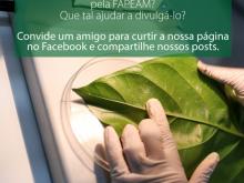 curtidas-face-fapeam17