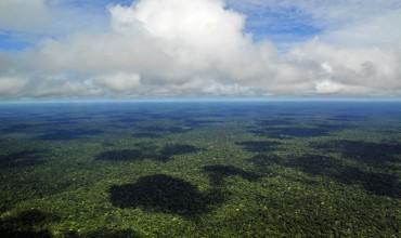amazoniachuvas