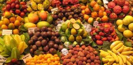 Amazonas terá uma usina de processamento de frutas no interior do Estado