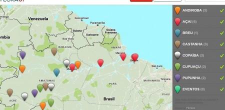 Empresa incubada no Inpa cria plataforma de espécies agroextrativistas da Amazônia