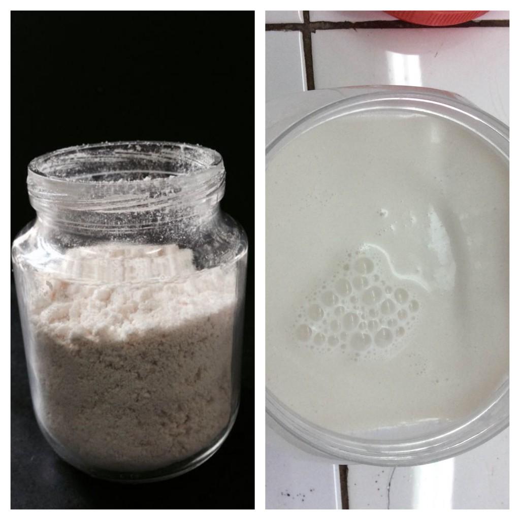 Estudo analisou castanha do brasil para a producao de leites em pó e condensado